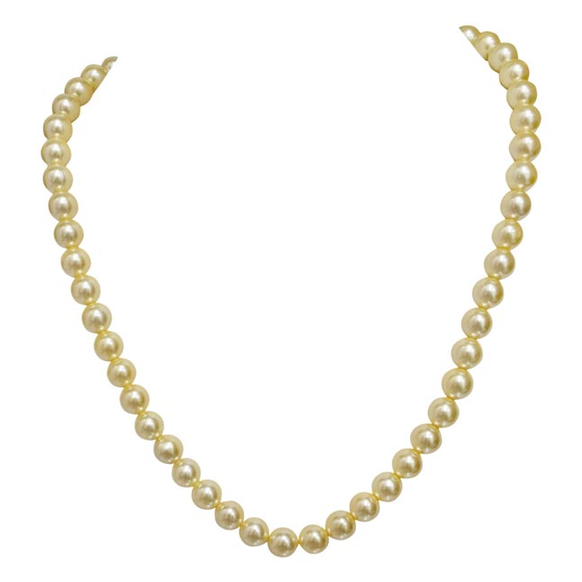 Single Line Yellow Shell Pearl Necklace PS478