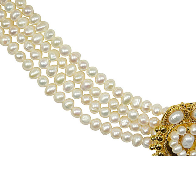 Eternity - 4 Line Gold Plated Pendant & Freshwater Pearl Necklace for Women (SN5)