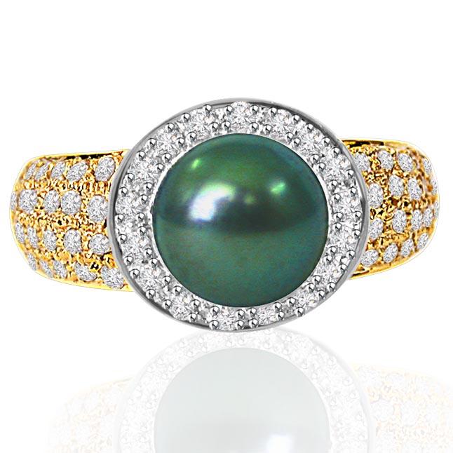 Shimmered Elegance -Pave Collection