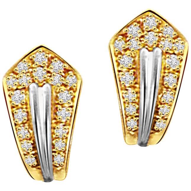Vertical Desire Elegant Woman Earrings -Balis & Hoops
