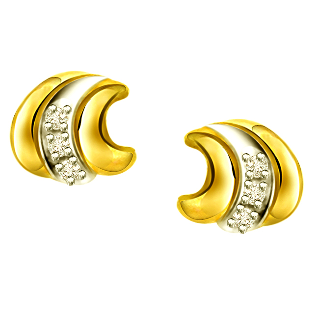 Shining Stars ER -85 -Two Tone Earrings