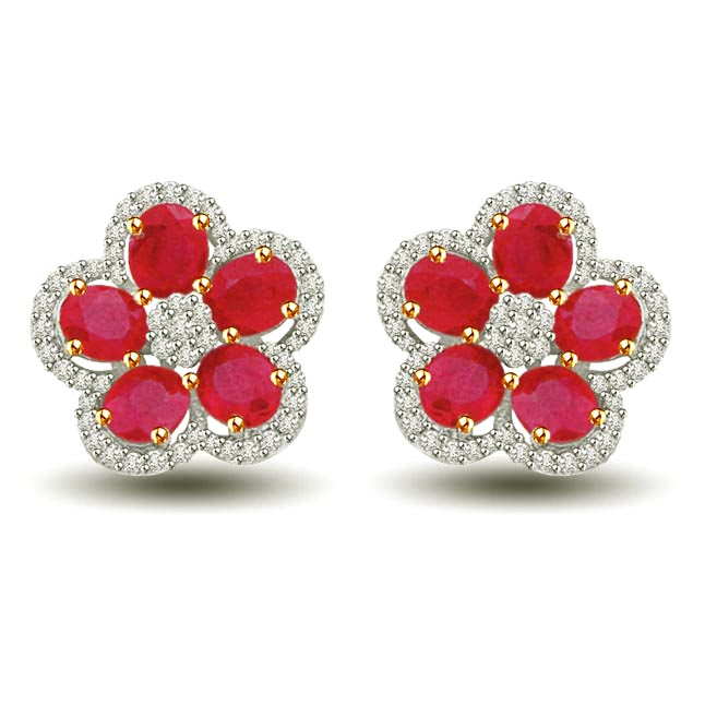 Floral Tristar Ruby & Diamond Two Tone Gold Earrings for My Ladylove