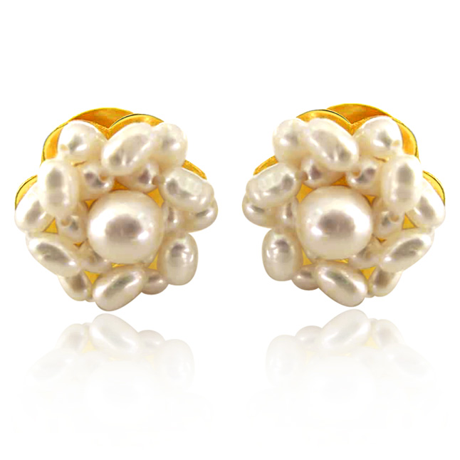Lustrous Pearl Beauties - Real Rice Pearl Kuda Jodi Earring for Women (SE17)