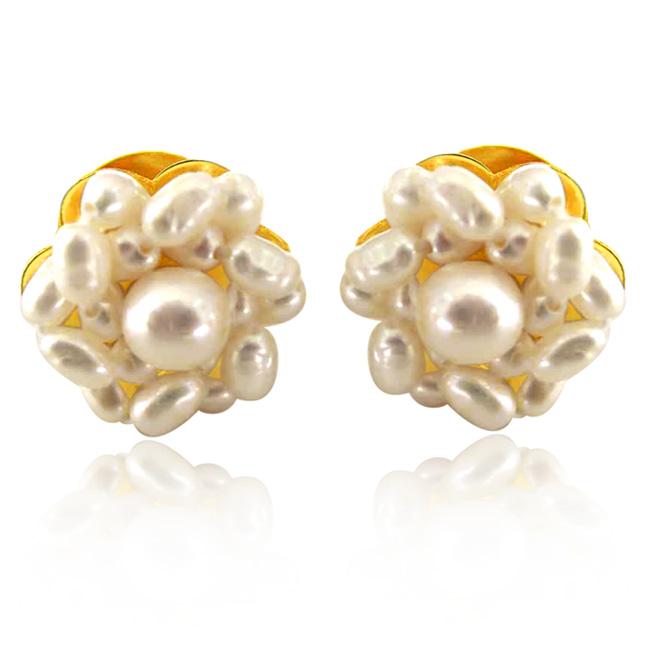 Lustrous Pearl Beauties -Kudajodi