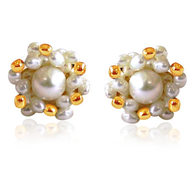 Golden Pearl Surprise -Kudajodi