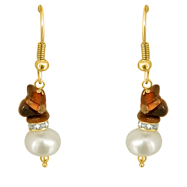 Trendy Pearl & Tiger Eye Earrings