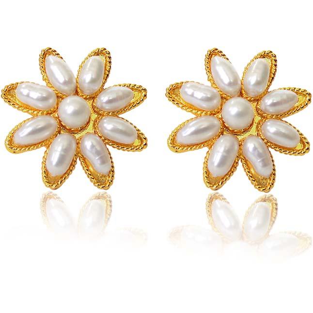 SE -21 Star Delight Earrings