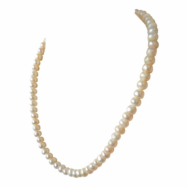 Single Line Real Big Freshwater Pearl Necklace -Single Line