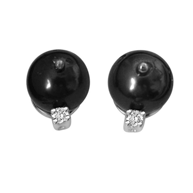 Tahitian Pearl & Diamond Earrings in 14kt White Gold -Tahitian Pearl Earrings