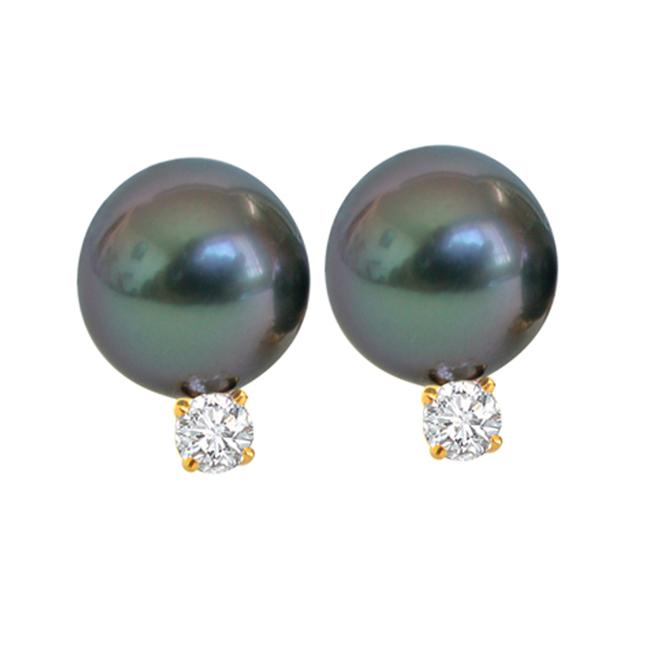 Tahitian Temptress Pearl Earrings -Tahitian Pearl Earrings